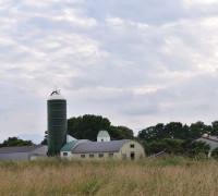 Farming Experience Tour